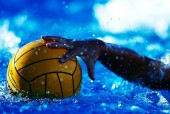 waterpoloball